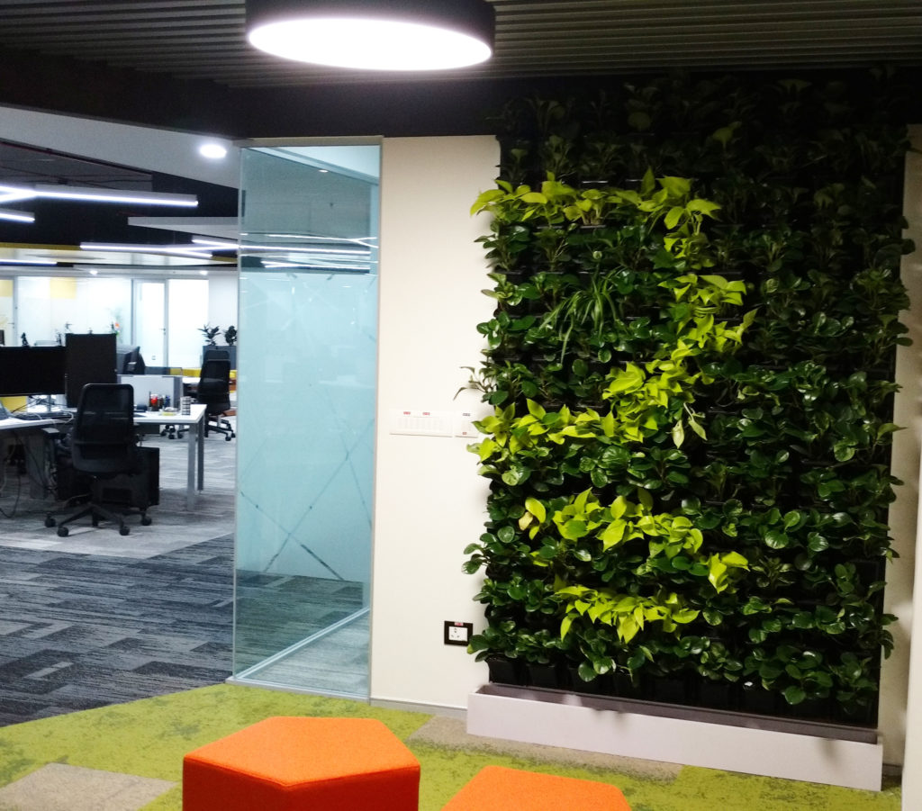 Gamlaa vertical wall gardens flexi green walls in hyderabad gamlaa is a leading player in designing and installation of green walls for outdoor and indoor commercial premises our state of the art green walls aloadofball Gallery